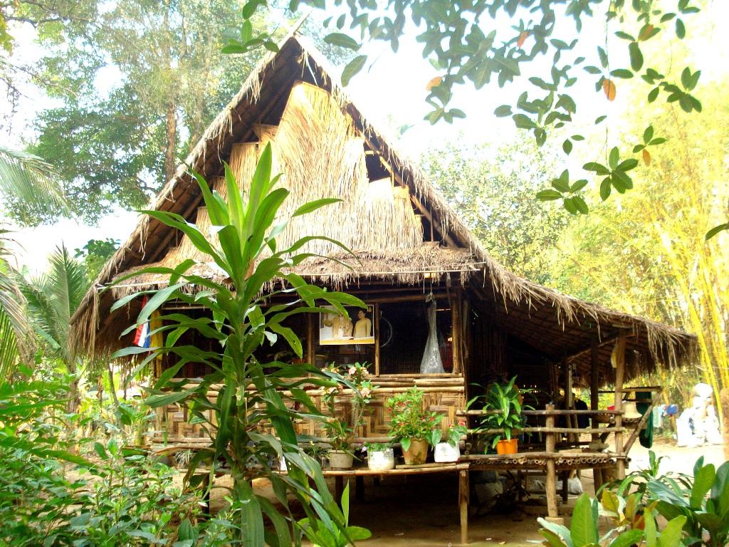 Дом в джунглях